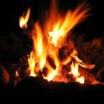 """firewood"""